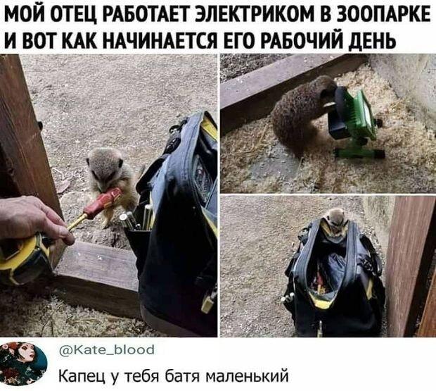 Косячники  80 lvl