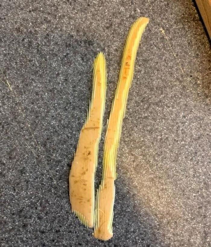 Зацензуренный очисток от тыквы