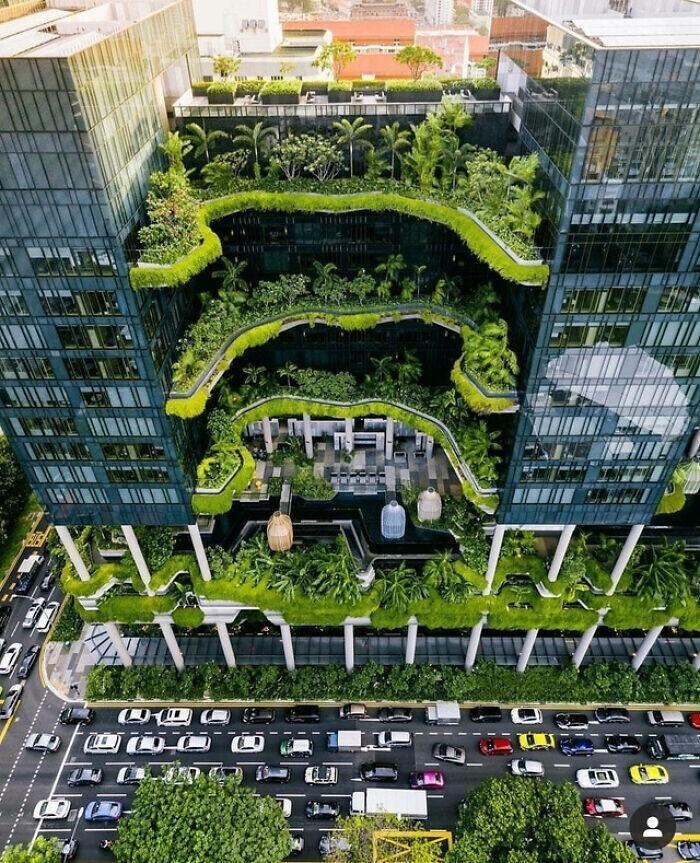 """Крутой """"зеленый"""" отель в Сингапуре"""