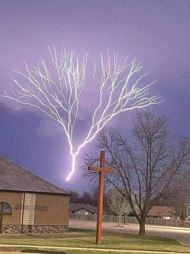 Молния похожа на дерево