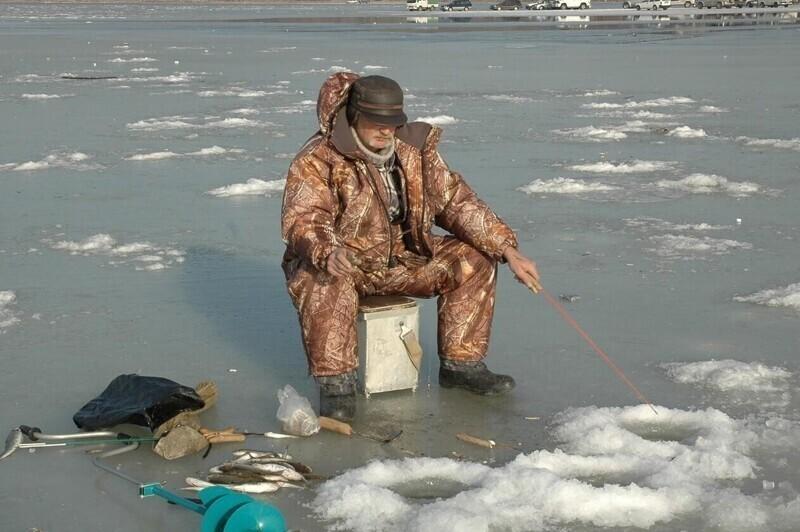 Пока штрафы регулируют только место и сезон рыбалки, количество улова и прочее, о жизни любителей удочек не беспокоятся