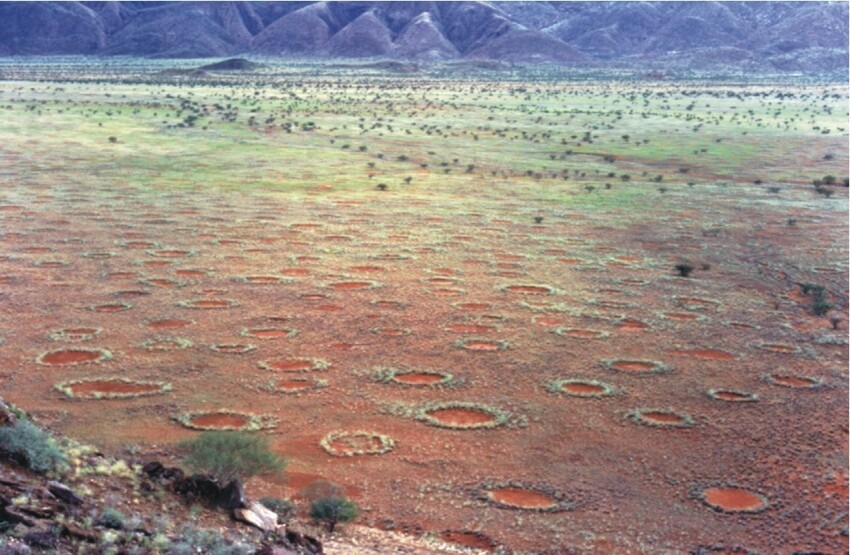 Волшебные круги Намибии