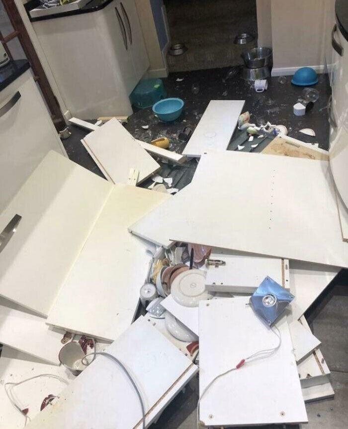 """4. """"Новые кухонные шкафчики решили сходить прогуляться в 4 утра"""""""
