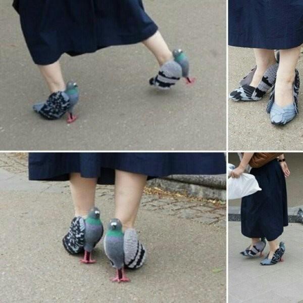 Надеюсь ни одного голубя не пострадало!