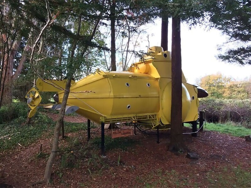 В новозеландском лесу выросла собственная Yellow Submarine