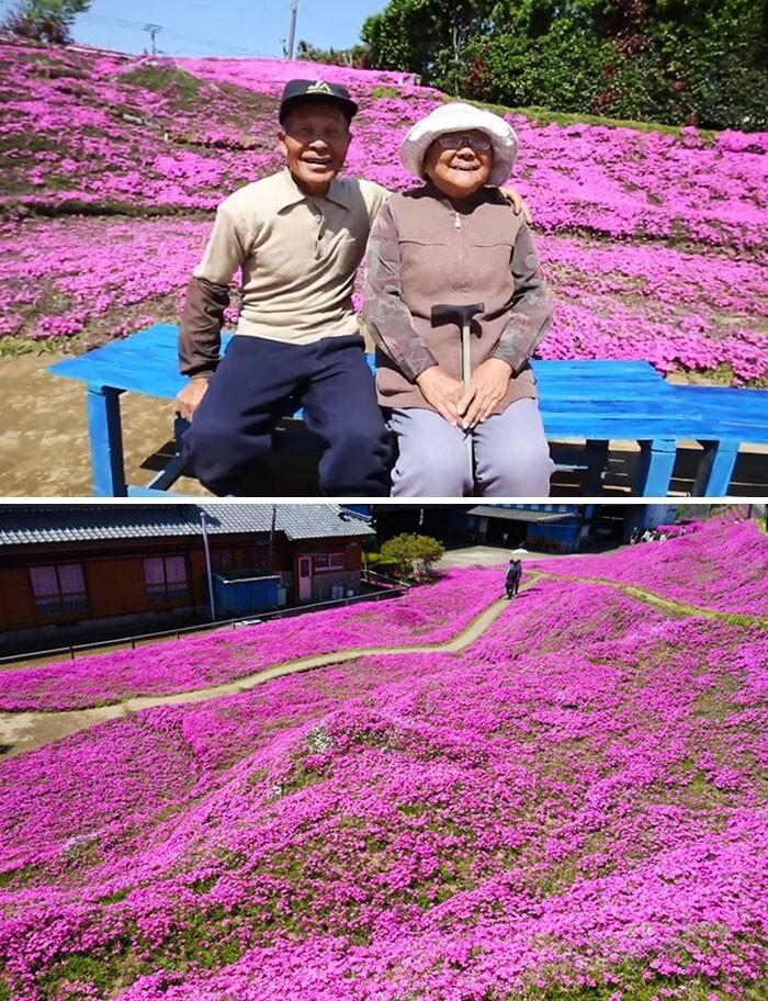 1. Муж потратил два года, чтобы посадить тысячи ароматных цветов для своей слепой жены, чтобы помочь ей справиться с депрессией