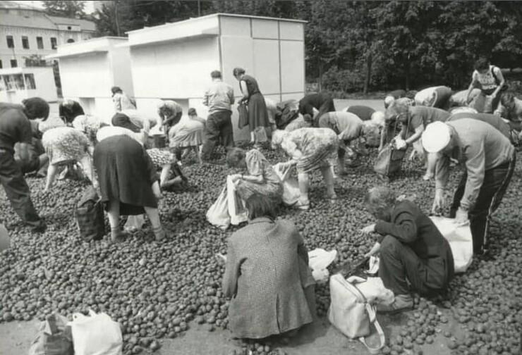 10. Раздача бесплатной гнилой картошки. Москва, 1993 год