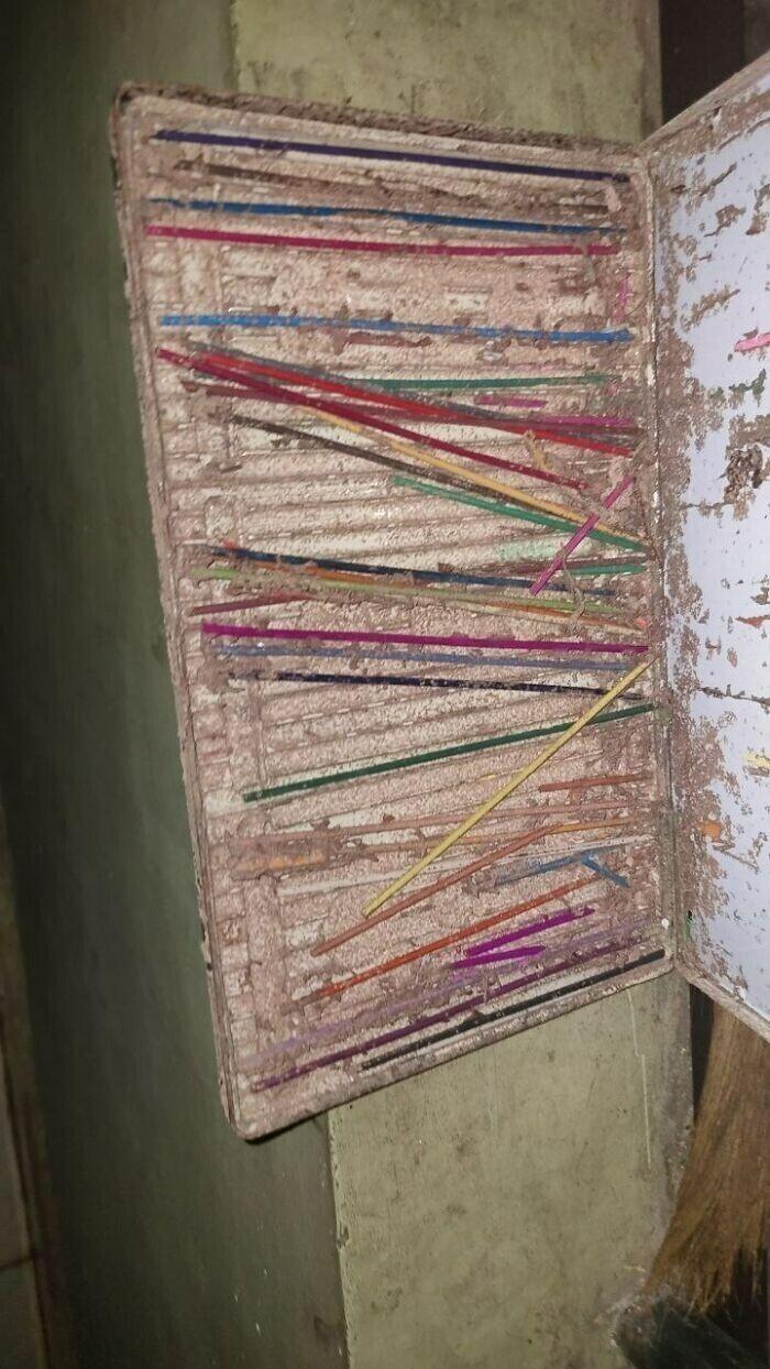 Термиты съели коробку карандашей, оставив одни несъедобные грифели