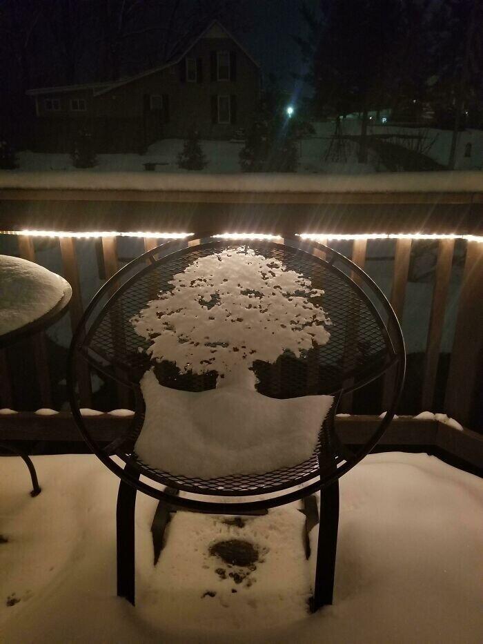 """""""Тающий снег на стуле сформировал силуэт дерева"""""""