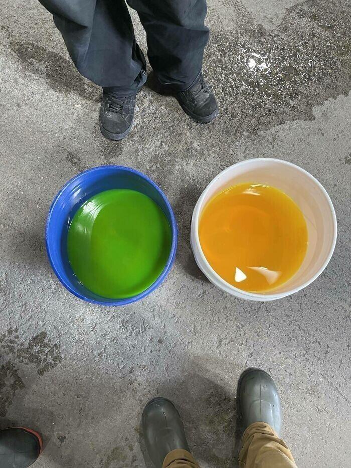"""""""Вы не поверите, но жидкость в обоих ведрах - одного цвета. Вот что делает контраст с цветом ведра!"""""""