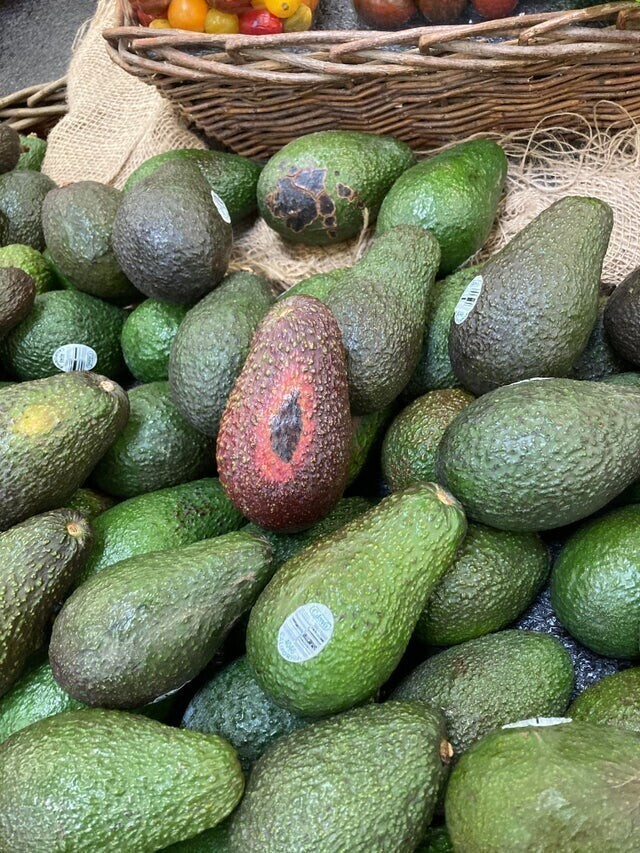 1. Разгневанный авокадо