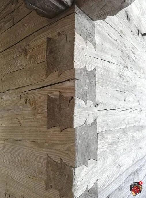 Двойной ласточкин хвост