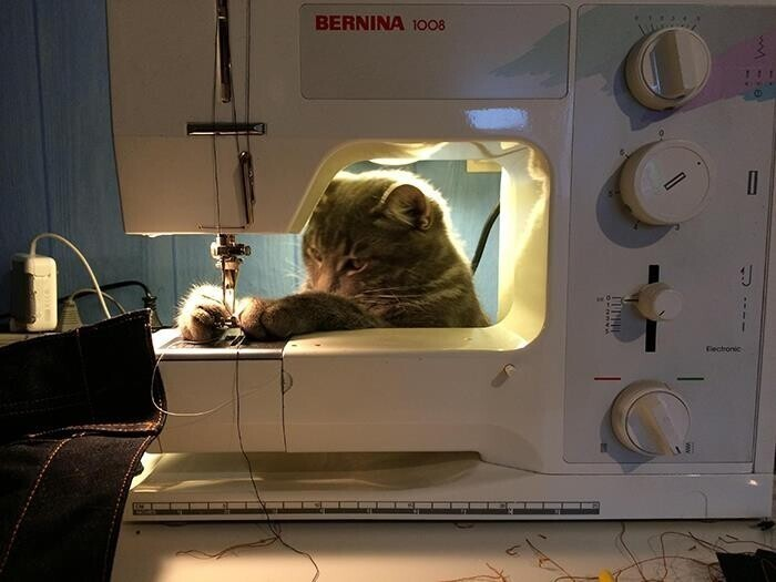 """""""Я ещё вышивать могу, и на машинке тоже!"""""""