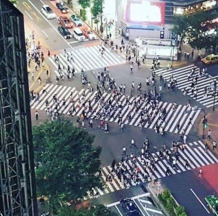 В стране огромное количество пешеходных переходов