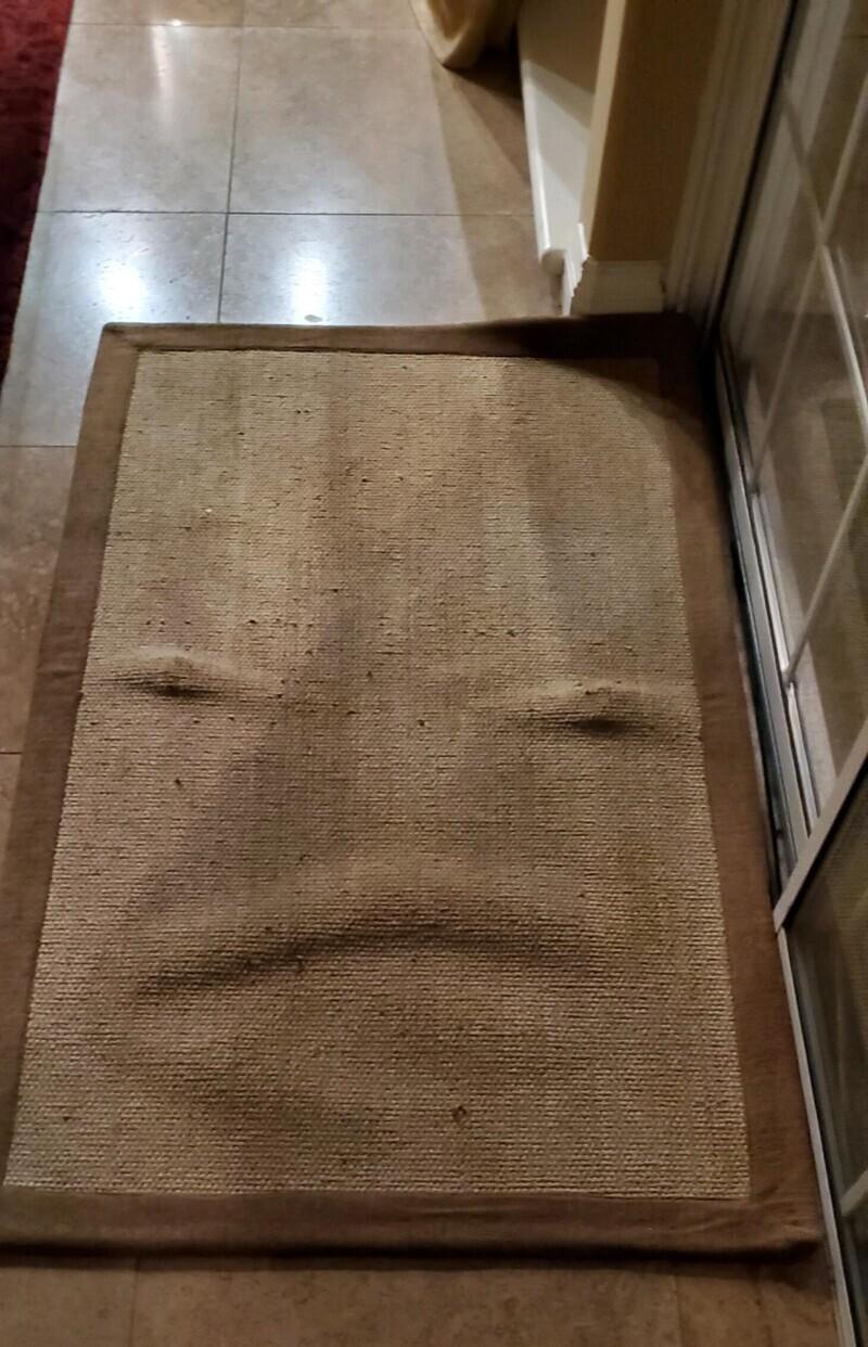 Я постирала коврик, кажется он этим недоволен