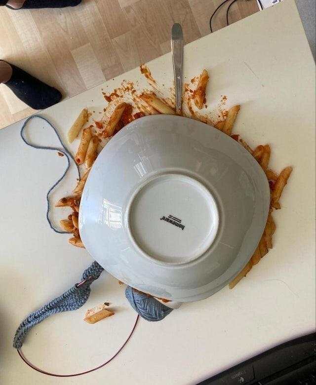 Без ужина, и пряжа испорчена