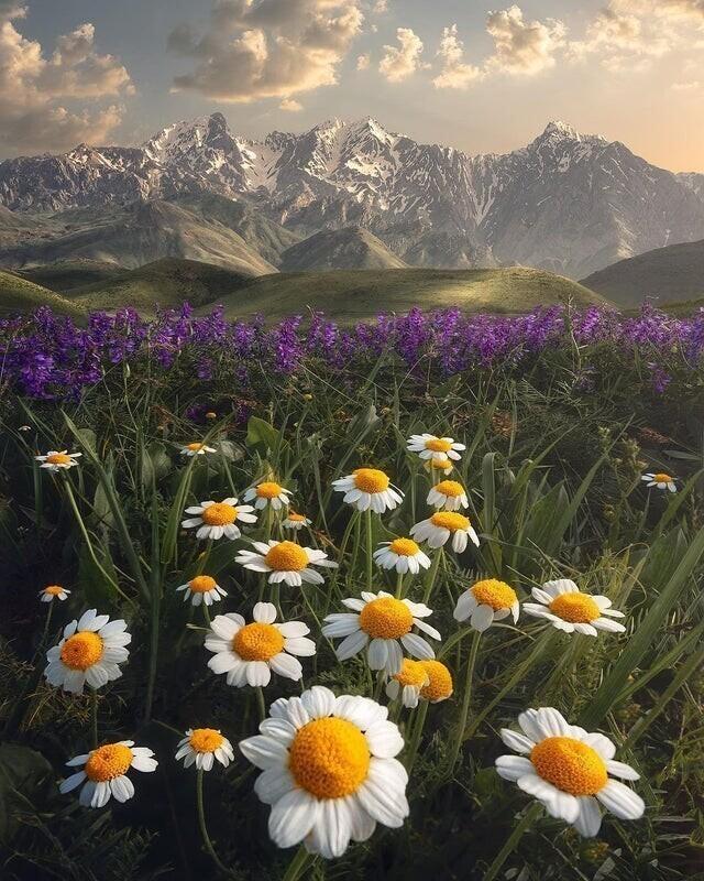 Как прекрасен мир и его отдельные уголки
