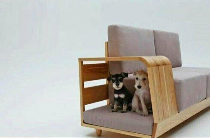 Отличный компромисс:  лежанка для собак, которые любят спать на диване рядом с хозяином - но сам хозяин от этого не в восторге