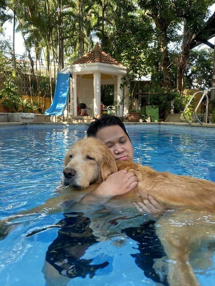 Пожилой пес уже не может плавать самостоятельно, хотя всегда любил. Хозяин каждый день устраивает ему заплывы, держа на руках