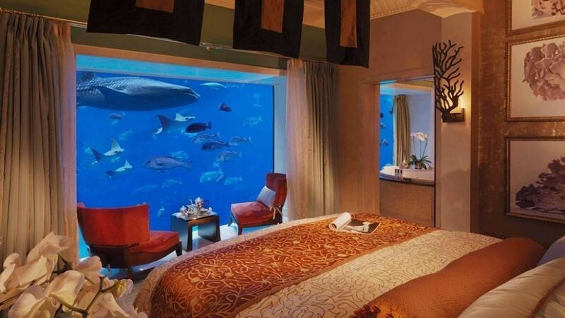 Отель с аквариумной стеной
