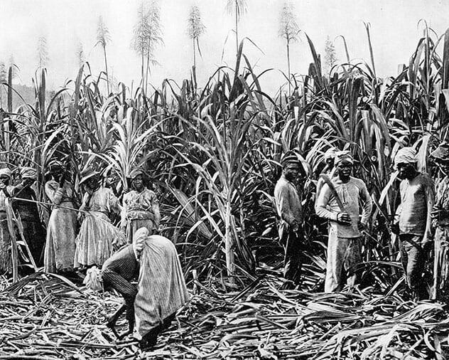 3. Рабов привозили только в США