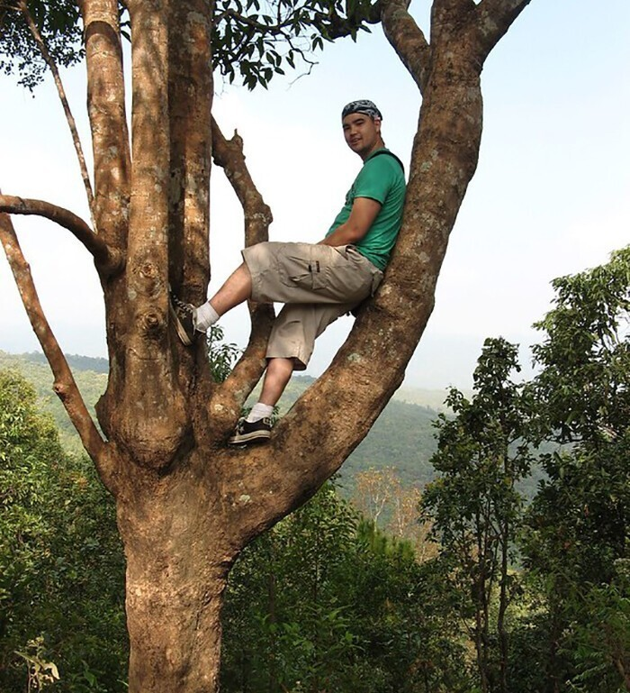 21. В Ошаве, Канада, запрещено лазать по деревьям
