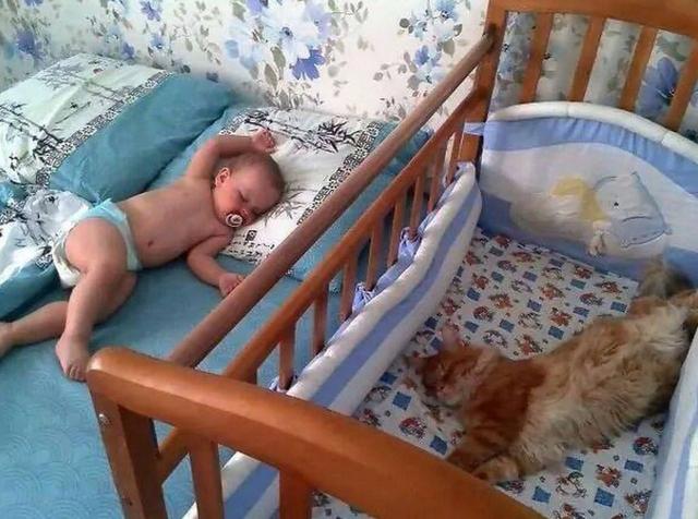 Он уверен, что эту кроватку купили ему