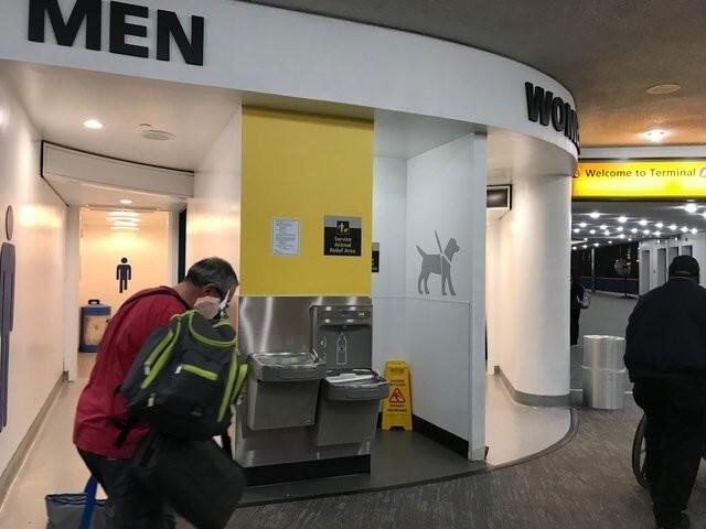 Туалет для животных в аэропорту
