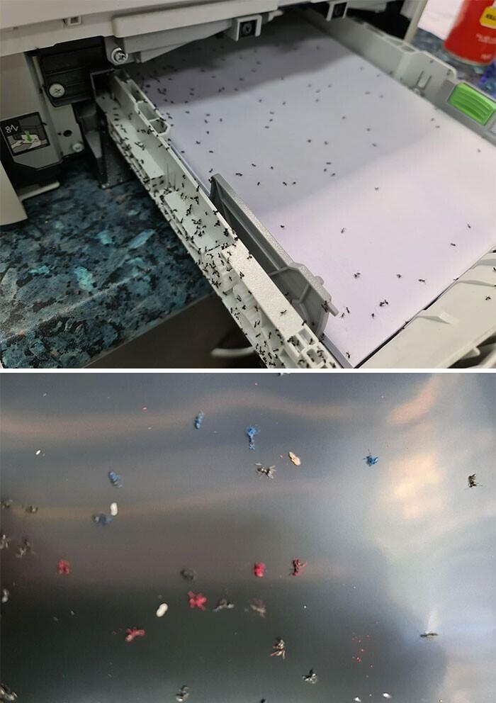 3. Сначала запахло паленым, потом принтер запищал, потом сдох. Разноцветные муравьи!
