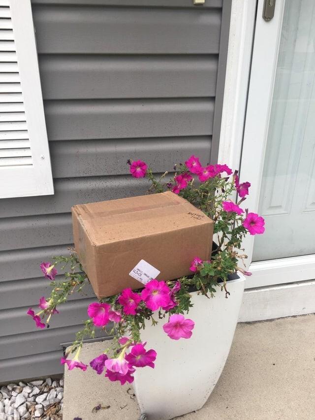 Мне доставили посылку