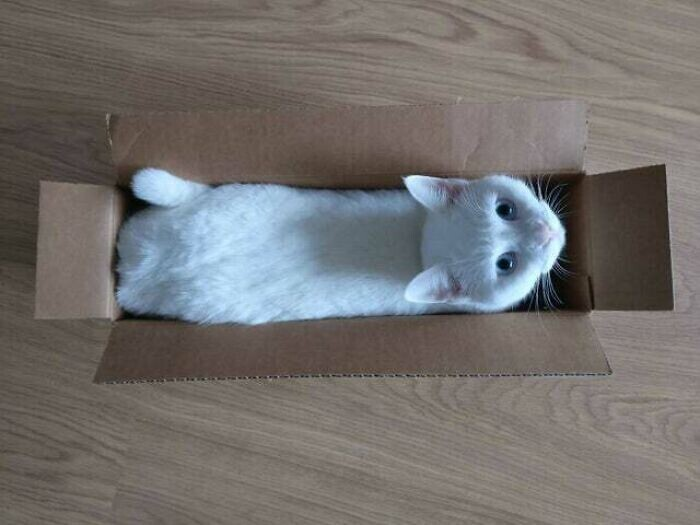 Батон в упаковке