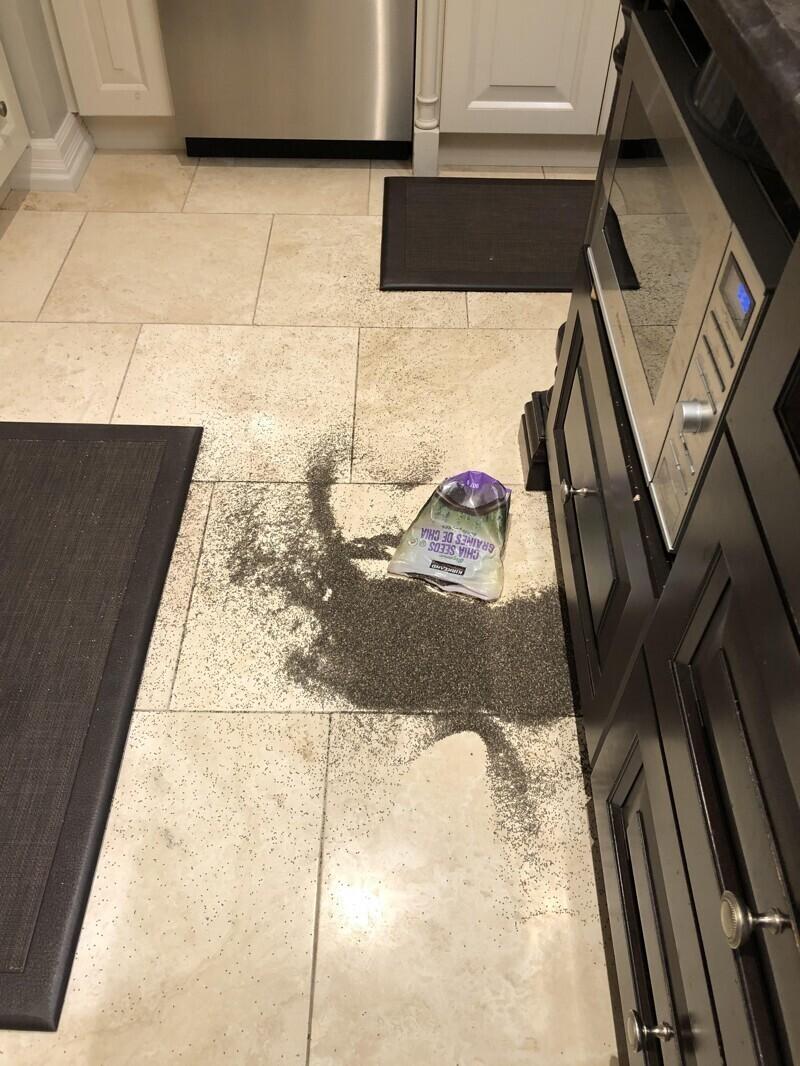 """""""Мама как раз закончила уборку в кухне и решила переставить пакет с семенами чиа"""""""