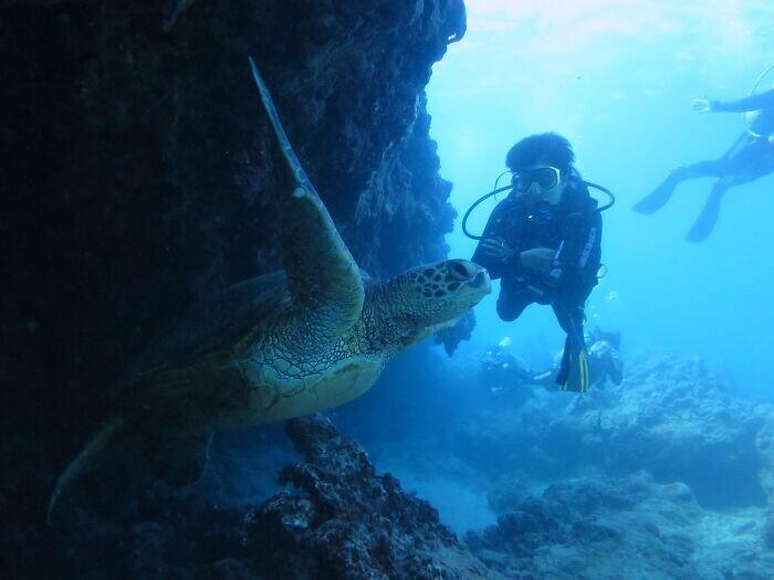 4. Морской биолог