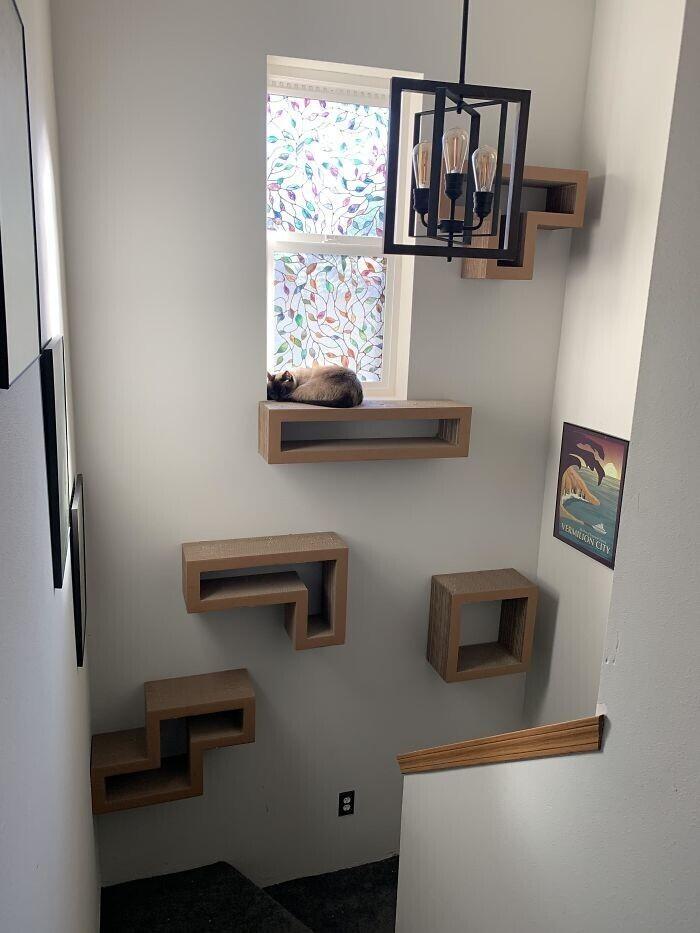 Настенные кошачьи лазалки отлично экономят место в тесной квартире