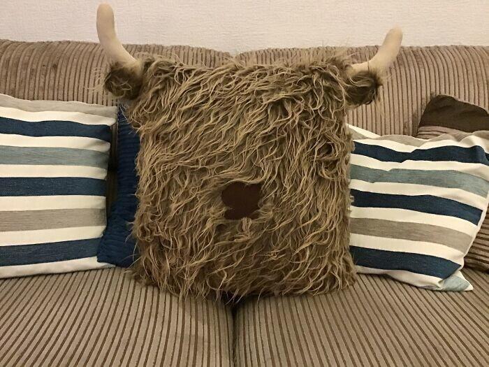 5. Каждому нужна такая подушка!