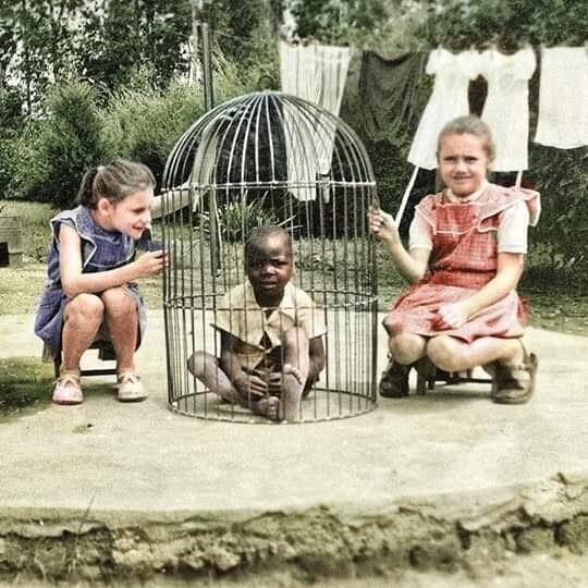 Расизм по отношению к неграм