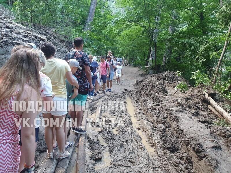 После наводнения: Ялта и ее крокодилы