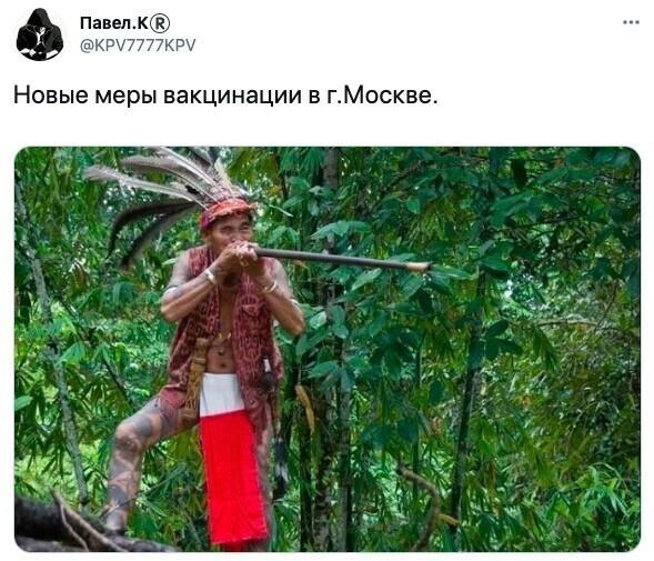 1. Интернет-пользователи именно так видят принудительную вакцинацию в Москве