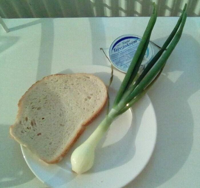 """""""Это завтрак в венгерской больнице"""""""