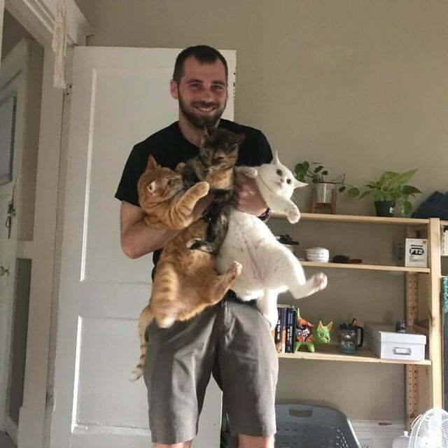 Я впервые взял на руки всех наших котиков