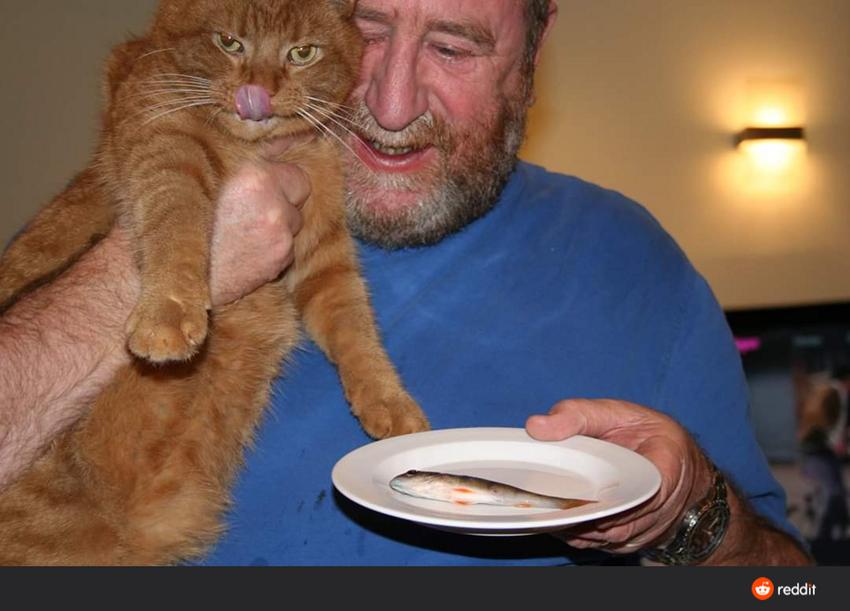 Отец специально для нашего кота ловит рыбу