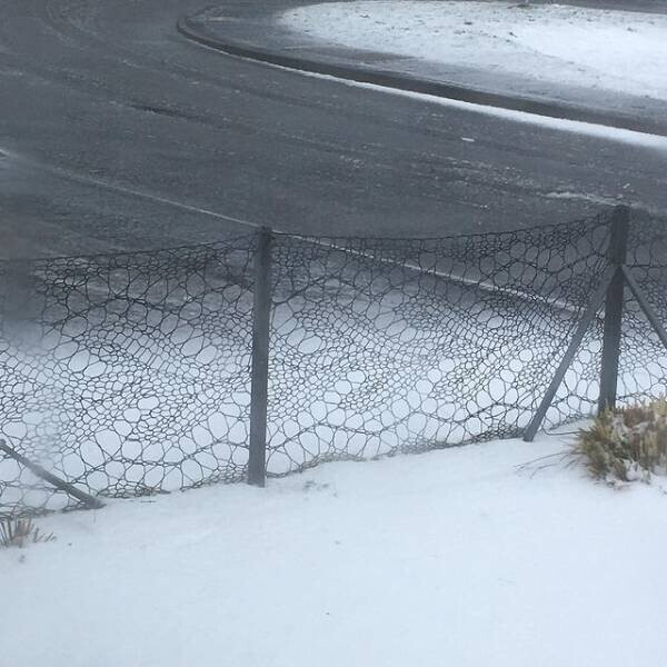 Энн Унсон,жительница Шетландских островов, связала себе забор
