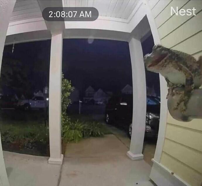 """""""В два часа ночи сигнализация сообщила мне, что кто-то вторгся в пределы дома"""""""