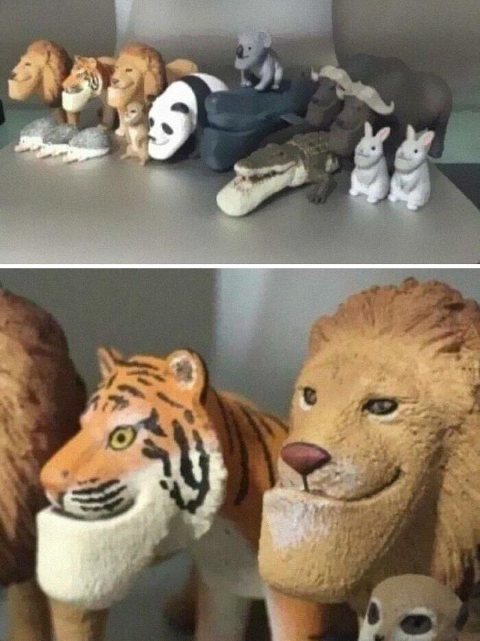 Когда дизайнер ну очень не любит кошек