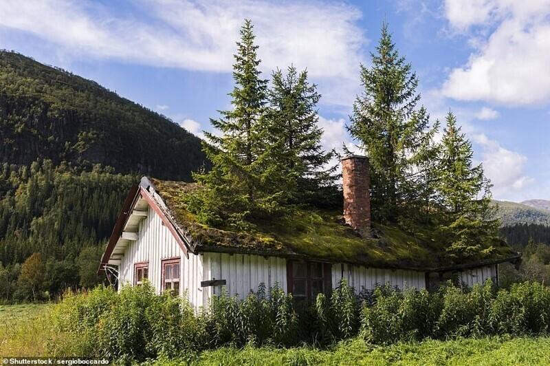 Этот заброшенный домик находится в местечке Тува в Норвегии, что в 160 километрах от столицы Осло