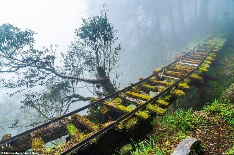 Заброшенный участок на бывшей лесной железной дороге Цзянси в Национальном парке Тайпиншань на Тайване