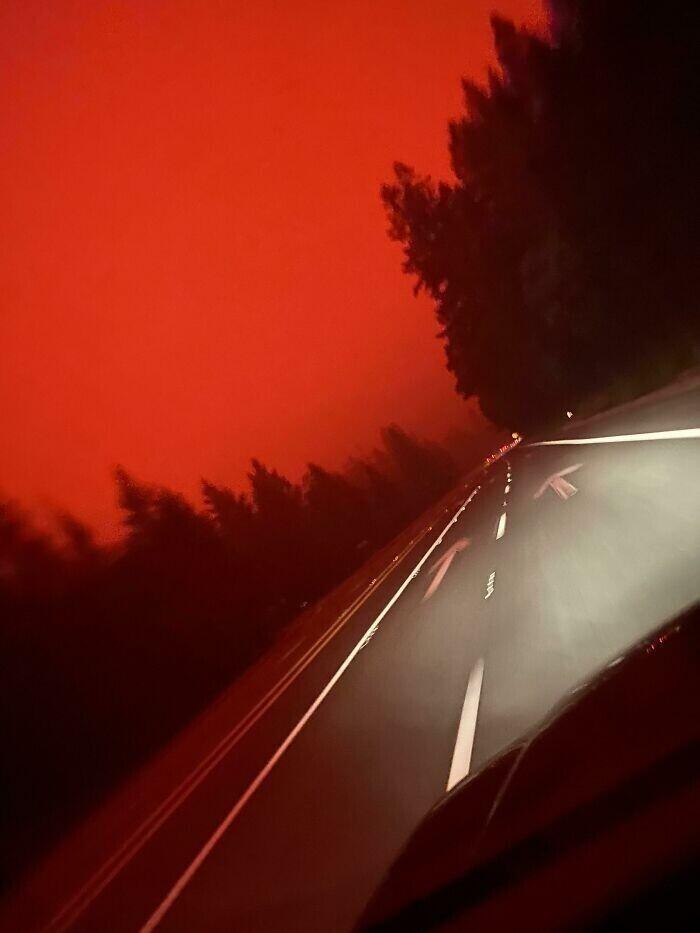 """""""В выходные поехаланавестить бойфренда, но пришлось повернуть назад: лесной пожар открыл на дороге врата в ад"""""""