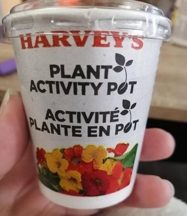 В закусочных Harvey's в Канаде к стандартному детскому сету в качестве подарка прилагается не игрушка, а горшочек с живым растением