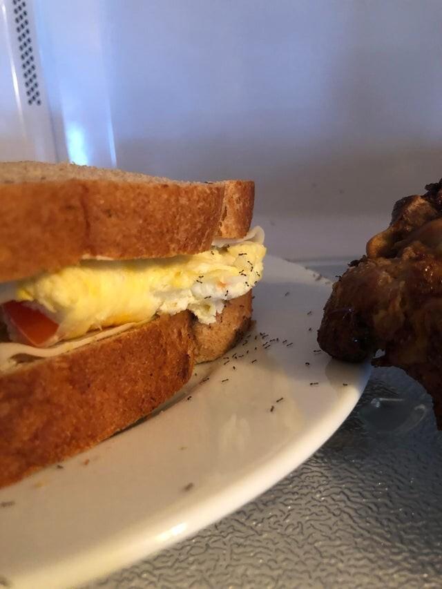 4. Забыл бутерброд на столе
