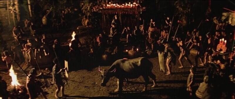 """На съемках """"Апокалипсис сегодня"""" (1979) засняли реальный ритуал с убийством жертвенного быка. Животное уже было помечено для жертвоприношения местным племенем"""